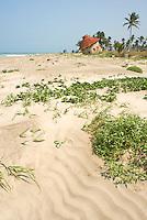 Tecolutla Veracruz, Mexico. April 7, 2008
