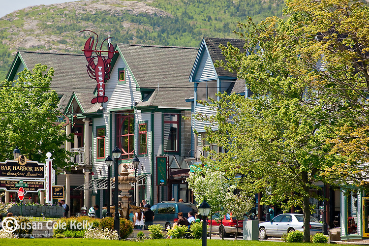 Bar Harbor Shops against Cadillac Mountain in Summer, Bar Harbor, ME, USA