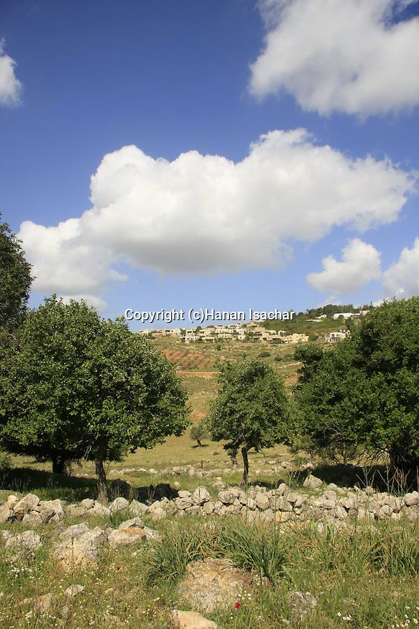 Israel, Lower Galilee. A view of Moshav Yodfat from Tel Yodfat