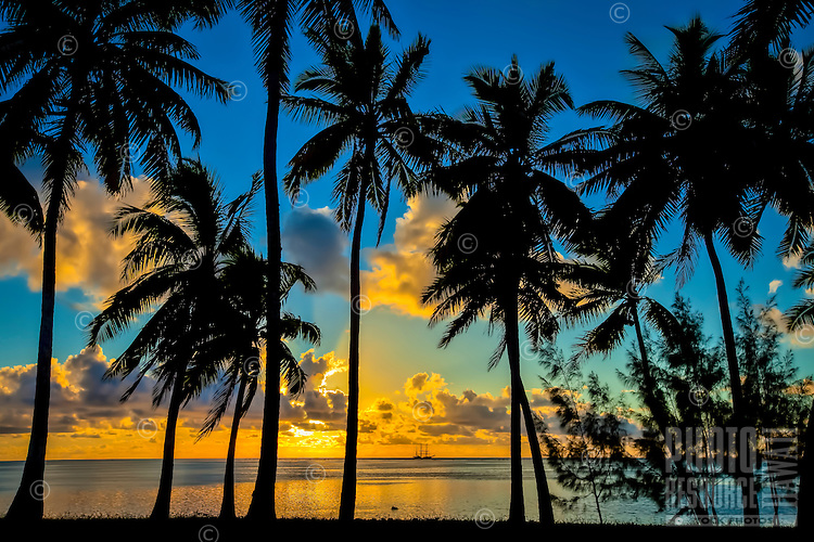 Sunset at Amuri Beach, with a silhouette of palm trees framing a Dawn Treader in the distance, Amuri Beach, Aitutaki Island, Cook Islands