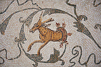 Picture of a Roman mosaics design depicting scenes from the Life of Dionysus, detail of an animal and tendrils, from the ancient Roman city of Thysdrus, House of Silenus. Late 2nd to early 3rd century AD. El Djem Archaeological Museum, El Djem, Tunisia.