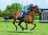 Sweet Sandy winning at Delaware Park on 7/10/17