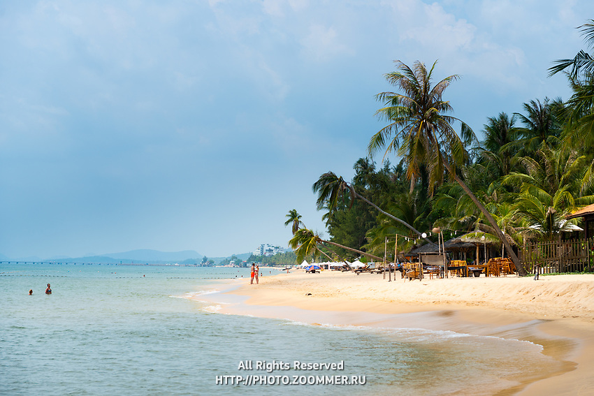 Palm treen on Long Beach, Phu Quoc, Vietnam