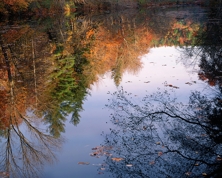 Reflections in the Wild & Scenic Obed River as viewed at Clear Creek Junction in the fall, TN