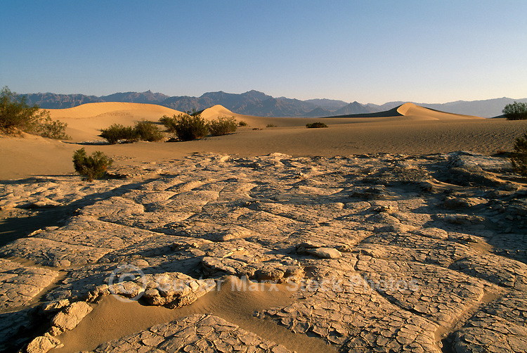 Death Valley National Park, California, CA, USA - Dry Cracked Mud on Mesquite Flat Sand Dunes, near Stovepipe Wells, at Sunrise - Funeral Mountains in Distance