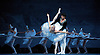 Swan Lake<br /> Mariinsky Ballet <br /> presented by Victor Hochhauser<br /> at The Royal Opera House, London, Great Britain <br /> 25th July 2011<br /> <br /> Uliana Lopatkina (as Odette/Odile)<br /> Daniil Korsuntsev (as Prince Siegfried)<br /> <br /> in the white adagio pas de deux<br /> Photograph by Elliott Franks