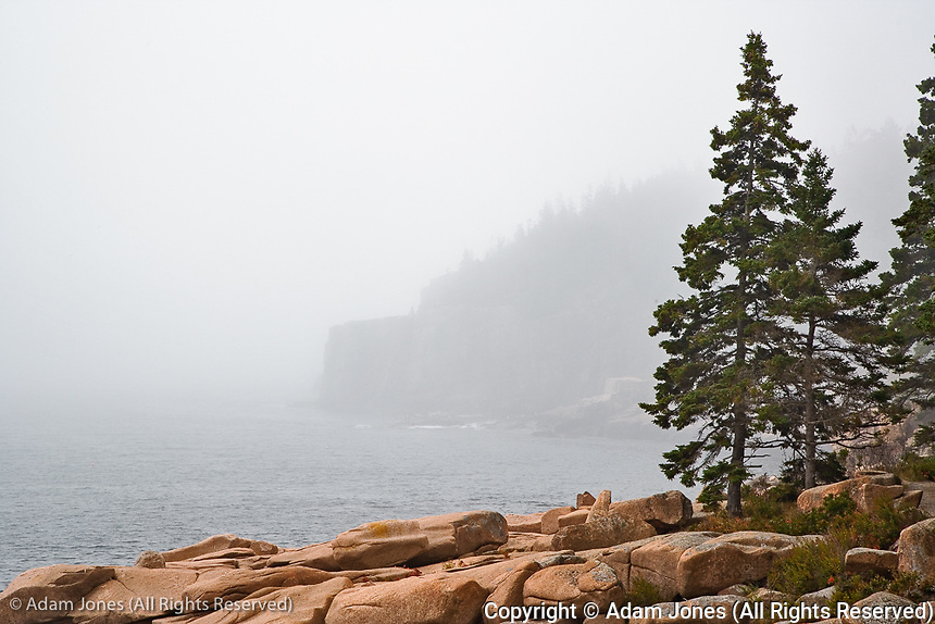 Granite bouders and distant Otter Cliff, among fog along coastline of Acadia National Park, Maine
