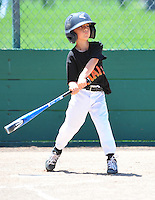 PNLL A Giants action 2015. (Photo by AGP Photography)