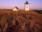 Cape Cod National Seashore, MA <br /> Wood End Light with dune grasses<br /> illuminated by the colors of predawn light
