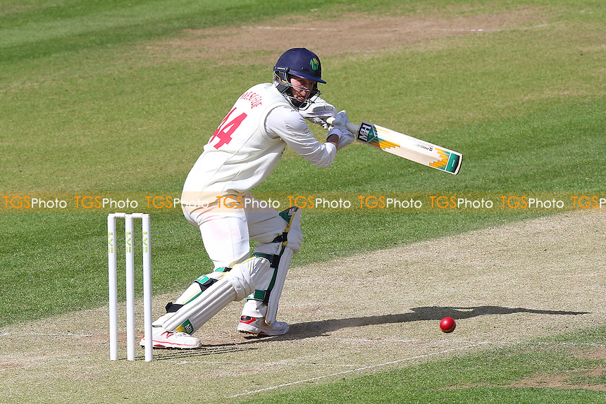 Craig Meschede in batting action for Glamorgan - Glamorgan CCC vs Essex CCC - LV County Championship Division Two Cricket at the SWALEC Stadium, Sophia Gardens, Cardiff, Wales - 20/05/15 - MANDATORY CREDIT: TGSPHOTO - Self billing applies where appropriate - contact@tgsphoto.co.uk - NO UNPAID USE