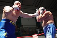 Lucian Atana vs Miloslav Pavek - York Hall 20-07-19 - Lucian Atana from Romania making his professional debut