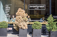 Diners in the window of the Nomad branch of the Sweetgreen chain of seasonal farm-to-table restaurants in New York on Wednesday, June 3, 2015.  (© Richard B. Levine)