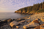 Dawn view of Otter Cliffs, Acadia National Park, Hancock County, Maine, USA