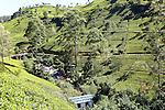 Mackwoods tea estate factory hydro power building, Nuwara Eliya, Central Province, Sri Lanka, Asia