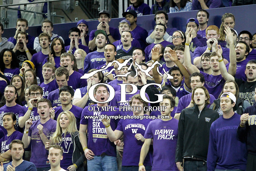 February 12, 2014:   Fans showed there support during the game between Washington and Stanford.  Washington defeated Stanford 64-60 at Alaska Airlines Arena in Seattle, Washington.