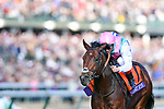November 3, 2018: Expert Eye #7, ridden by Frankie Dettori, wins the Breeders' Cup Mile on Breeders' Cup World Championship Saturday at Churchill Downs on November 3, 2018 in Louisville, Kentucky. Michael McInally/Eclipse Sportswire/CSM