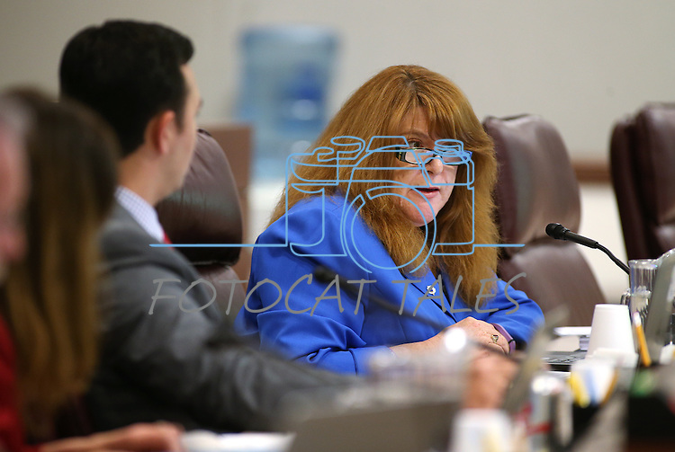 Nevada Assemblywoman Ellen Spiegel, D-Henderson, works in committee at the Legislative Building in Carson City, Nev., on Tuesday, March 3, 2015. <br /> Photo by Cathleen Allison