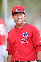 Jahmai Jones (22) of the AZL Angels before a game against the AZL Rangers at the Texas Rangers Spring Training Complex on July 1, 2015 in Surprise, Arizona. Rangers defeated Angels, 3-1. (Larry Goren/Four Seam Images)