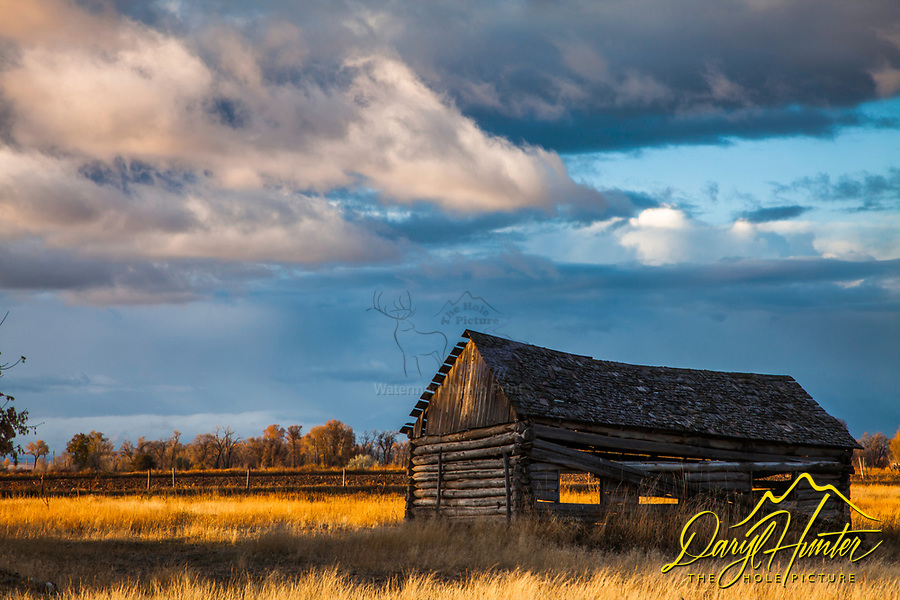 A daybreak thunderstorm decorates the sky above a derelict homestead in Rigby Idaho while the sun breaking the horizon sets the grass ablaze with morning light.