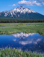 USA, Oregon, Deschutes National Forest, Mount Bachelor rises above swampy meadow near Sparks Lake.