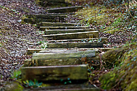 Wooden steps in a path in Aberporth