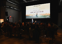 "HOLLYWOOD, CA - DECEMBER 4:  Director Neil Gelinas at National Geographic's ""Into the Okavango"" Premiere & Reception at at NeueHouse on December 4, 2018 in Hollywood, California. (Photo by Frank Micelotta/NatGeo/PictureGroup)"