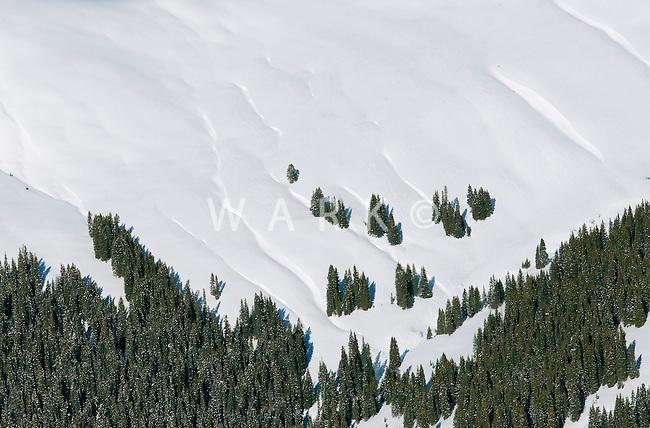 Colorado Rockies snow covered slope