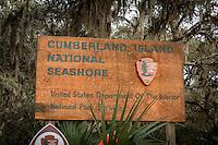 Cumberland Island National Seashore.