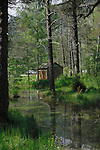 Hut and car in the forest next to stream, Ainsa district,Huesco, Arogon,Pyrenees Mountains, Spain