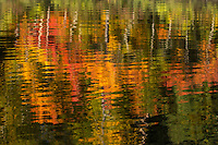 """Fall Color Abstracts I""<br />