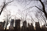 AVAILABLE FROM WWW.PLAINPICTURE.COM FOR LICENSING.  Please go to www.plainpicture.com and search for image # p5690256.<br />