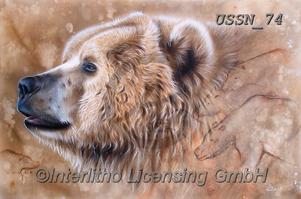 Sandi, REALISTIC ANIMALS, REALISTISCHE TIERE, ANIMALES REALISTICOS, paintings+++++Thesourcebear,USSN74,#a#, EVERYDAY,grizzly ,puzzles