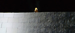 Roger Waters performing THe Wall at The Aviva Stadium Dublin. Photo:Colin Bell/pressphotos.ie