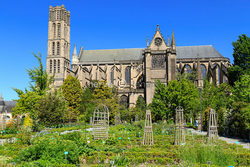 France, Haute-Vienne (87), Limoges, jardins de l'Évêché et la cathédrale Saint-Étienne // France, Haute Vienne, Limoges, the Jardin botanique de l'Eveche (Botanical Garden of the Bishopric)