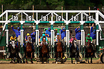 The horses break from the gate during the 132nd running of the Kentucky Derby at Churchill Downs in Louisville, Kentucky on May 6, 2006.  Barbaro, ridden by Edgar Prado, won the race....