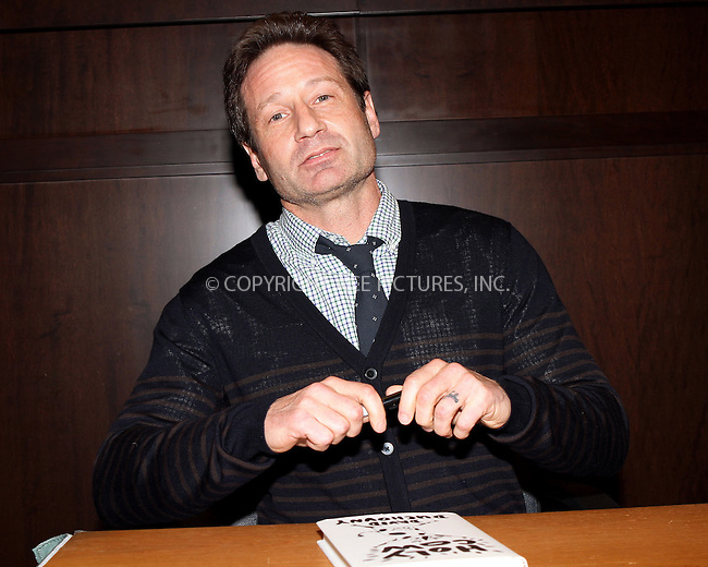 ACEPIXS.COM<br /> <br /> February 18 2015, LA<br /> <br /> David Duchovny signs copies of his new book 'Holy Cow' at Barnes &amp; Noble bookstore at The Grove on February 18, 2015 in Los Angeles, California.<br /> <br /> By Line: Nancy Rivera/ACE Pictures<br /> <br /> ACE Pictures, Inc.<br /> www.acepixs.com<br /> Email: info@acepixs.com<br /> Tel: 646 769 0430