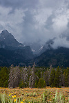 Brooding thunderclouds over Grand Teton National Park, Wyoming