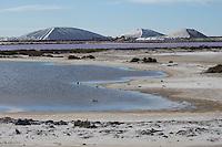 Meersalz-Gewinnung, Saline, Salinen, Anlage zur Gewinnung von Salz, Salzgewinnung, Salzproduktion, Salzproduktionen, Meerwassersalinen, Meerwassersaline, Meerwasser-Salinen, Meerwasser-Saline, Salzgewinnungsanlage, Salzgewinnungsanlagen, Meersalz, Salzgärten, Salzgarten, Salzberg, Salzberge, Salzteich, Salzteiche. Salins-du-Midi, Le salin d'Aigues-Mortes, Les Salins d'Aigues-Mortes, Salins du Midi in Aigues-Mortes, Camargue, Frankreich, Mittelmeer. Salt evaporation ponds, salterns, salt pans, Salt evaporation pond, evaporation basin, evaporation basins, , sea salt, saltern, France