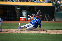 OAKLAND, CA - AUGUST 16:  Mike Moustakas #8 of the Kansas City Royals slides home safely against the Oakland Athletics during the game at the Oakland Coliseum on Wednesday, August 16, 2017 in Oakland, California. (Photo by Brad Mangin)