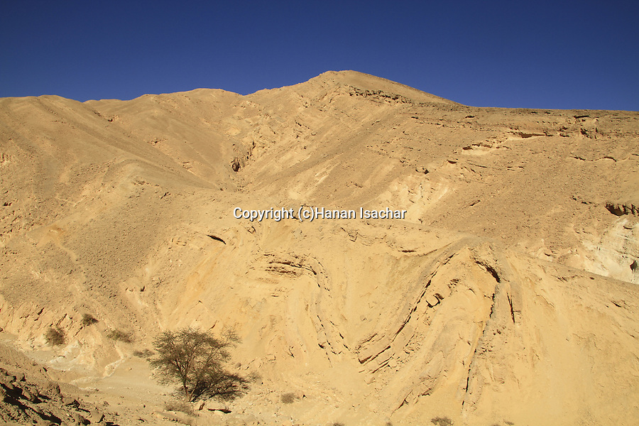 Israel, Wadi Etek in Eilat Mountains