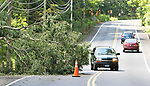 PROSPECT CT. - 05 August 2020-080520SV04-Cars get around a  tree that was blocking one lane of RT68 making travel hard in Prospect Wednesday.<br /> Steven Valenti Republican-American