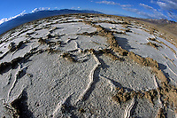 Repeated freeze-thaw cycles push salt crust into near-hexagonal honeycomb shapes in Badwater Basin, the lowest spot in North America, in Death Valley National Park, California.