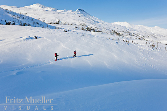 Backcountry skiing in White Pass in Northern British Columbia near Whitehorse, Yukon, Canada