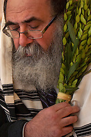 """Rabbi Yaakov Rapoport, Director of Chabad House Lubavitch at Syracuse University, prays with a Lulav bundle as he leads a small congregation of Jewish students during a morning service for Hoshana Rabbah. The bundle is made up of a Lulav (date palm frond), myrtle and willow branches which along with the Etrog (citron fruit) make up the Four Kinds used in Mitzvahs during the holiday of Sukkot. Hoshana Rabbah is the seventh day of Sukkot and is considered the final day of the divine """"judgment"""" in which the fate of the new year is determined.   Photo by James R. Evans ©"""