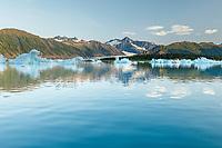 Summer landscape of icebergs at Bear Glacier and Bear Glacier Lagoon in Kenai Fjords National Park.  Kenai Penninsula, Summer, Alaska   <br /> <br /> Photo by Jeff Schultz/  (C) 2019  ALL RIGHTS RESERVED