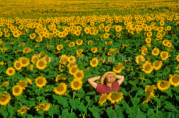 Woman standing in field of sunflowers, near Kathryn, North Dakota, AGPix_0078.