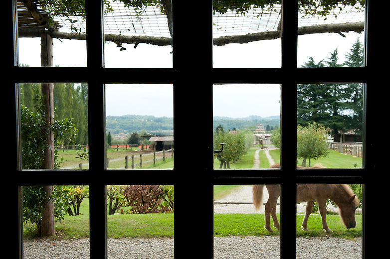 The former stables at Villa Gallici Deciani have been renovated in recent years and turned into a charming breakfast room for its guests. It looks on to the paddocks and fields where the Count Deciani's three ponies wander about freely.