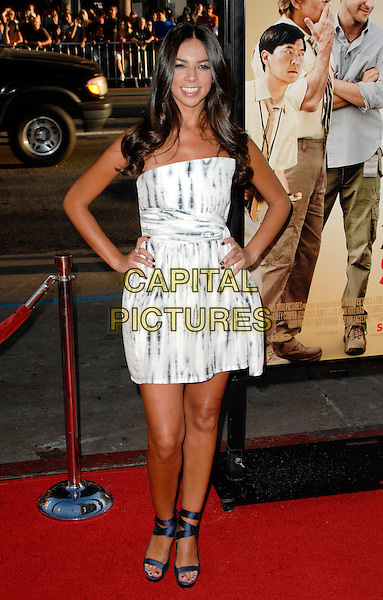 "TERRI SEYMOUR.The world premiere of ""All About Steve"" at Grauman's Chinese Theatre in Hollywood, California, USA..August 26th, 2009 .full length dress hands on hips grey gray shoes ankle strap sandals strapless white print platform teri.CAP/ROT.©Lee Roth/Capital Pictures"