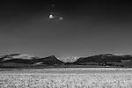 Parco Nazionale dell'Alta Murgia. Campi di grano.