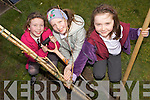 DIGGING DEEP: Planting trees at Duagh national school on Friday as part of National Tree Week, l-r: Megan Sheehy, Mai Johnson, Sadie O'Connor.
